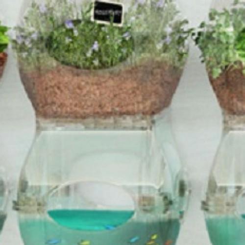 5 verrassend eenvoudige Aquaponics Systemen