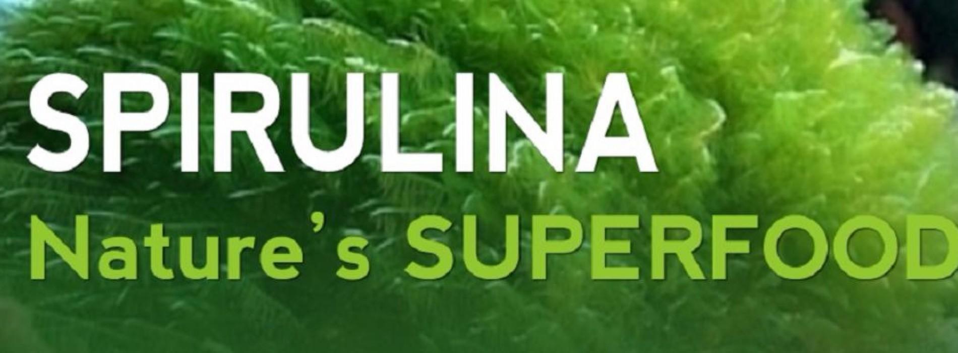 7 bewezen gezondheidsvoordelen van Spirulina