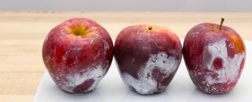 appels (2)