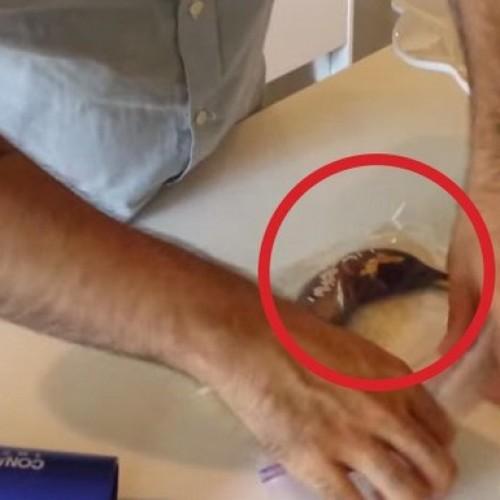 Hij doet een zwarte banaan in een zak rijst, het resultaat? Ik had dit NOOIT verwacht!