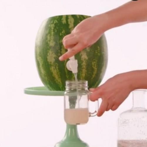 Maak je tuinfeestje nog beter met deze watermeloentap! Geniaal en verbazingwekkend makkelijk te maken!