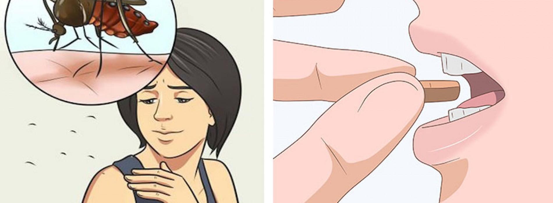 Door het gebruik van deze vitamine heb je geen last van muggen in de zomer!