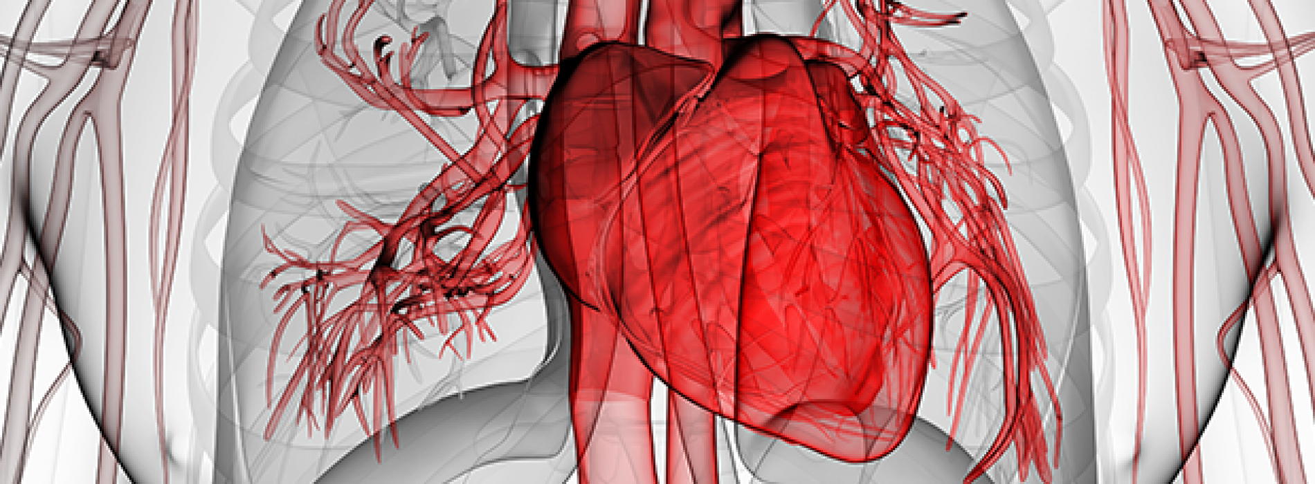 Curcumine vermindert kans op hart- en vaatziekten
