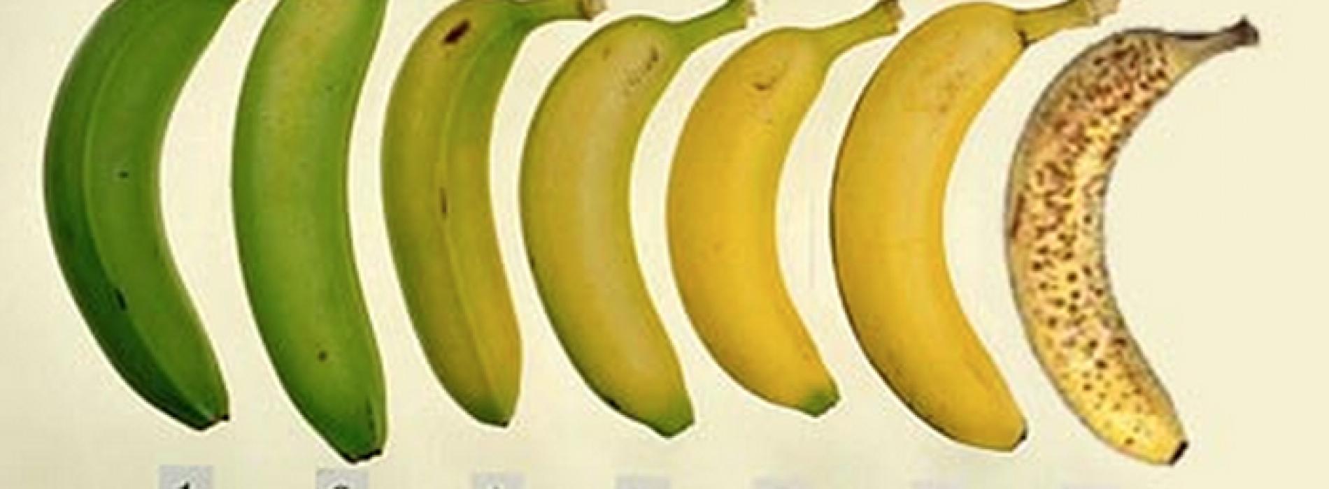 Dit is waarom bananen met zwarte vlekken beter zijn voor je gezondheid!