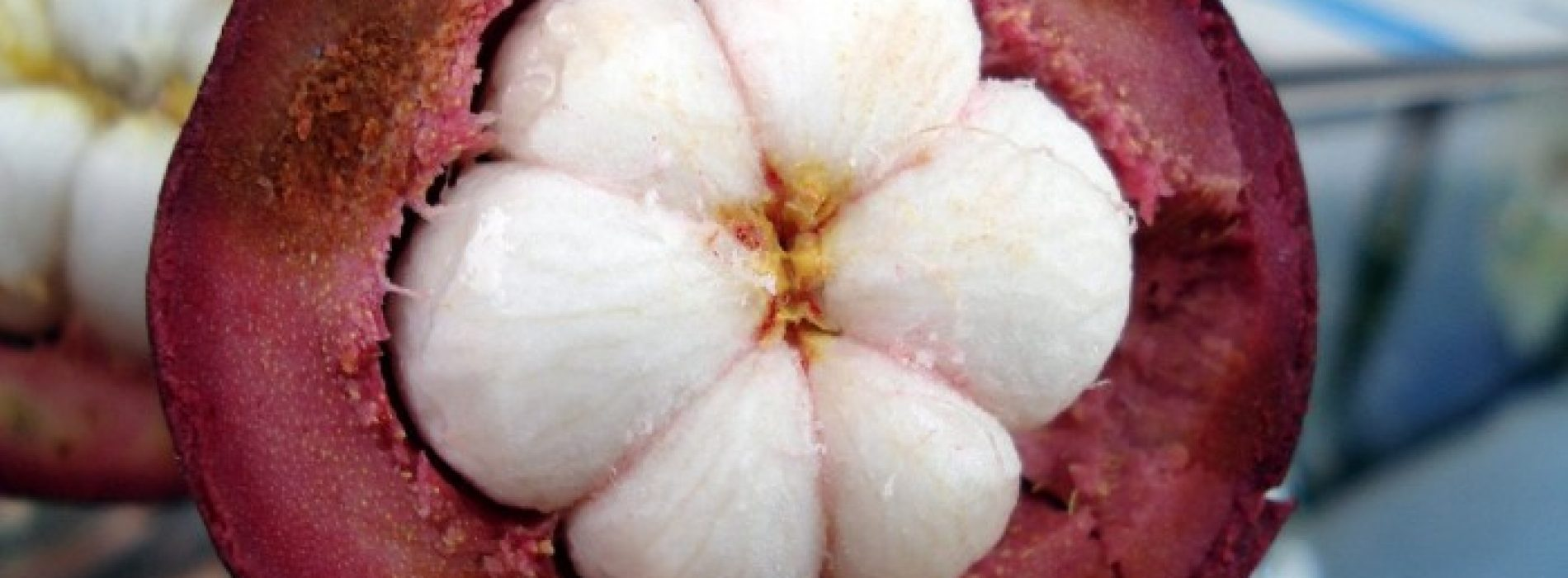 Deze tropische vrucht doodt borstkankercellen