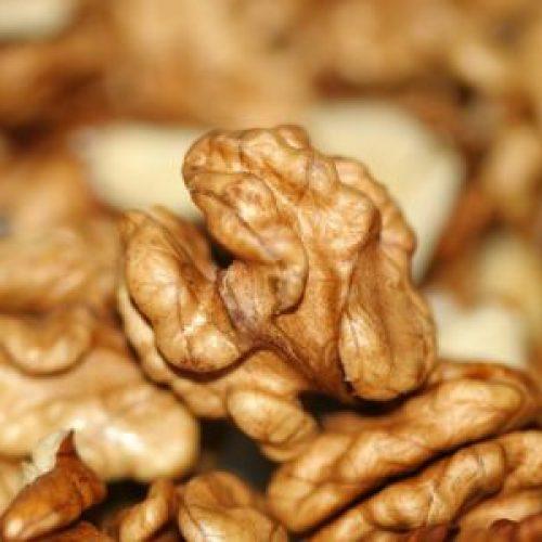 De gezondheidsbevorderende en beschermde werking van walnoten