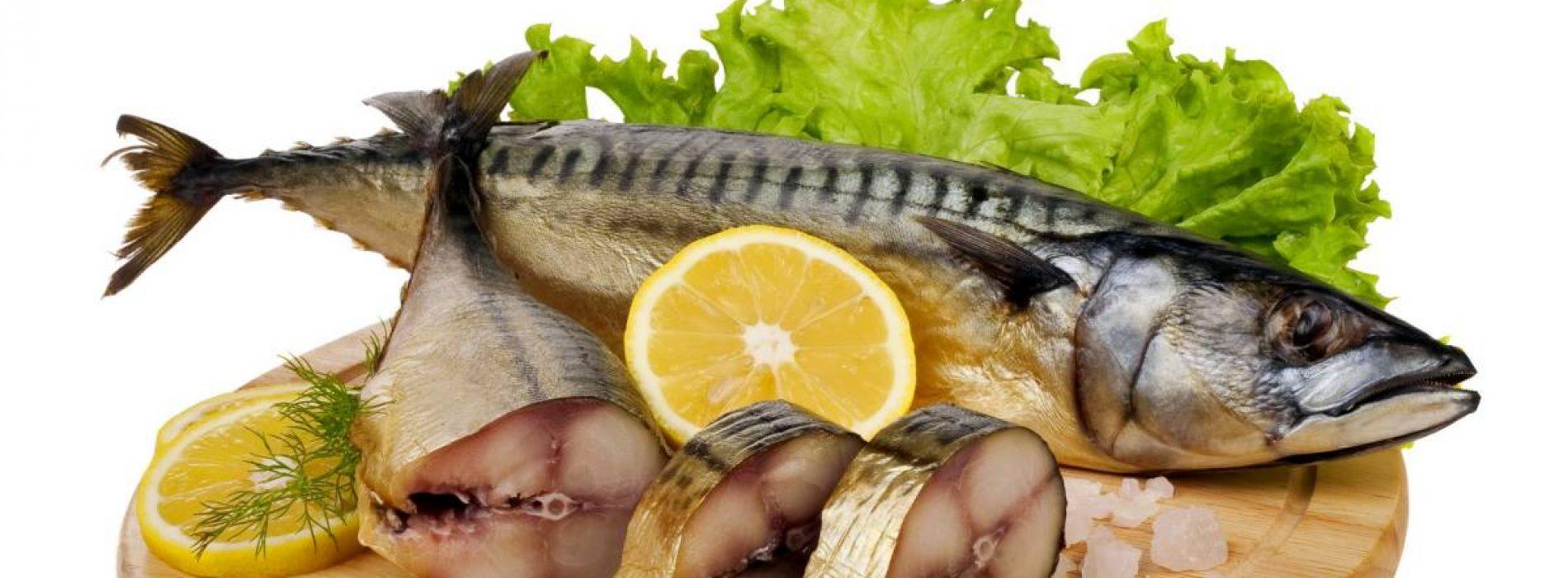 7 soorten vis die u nooit zou moeten eten