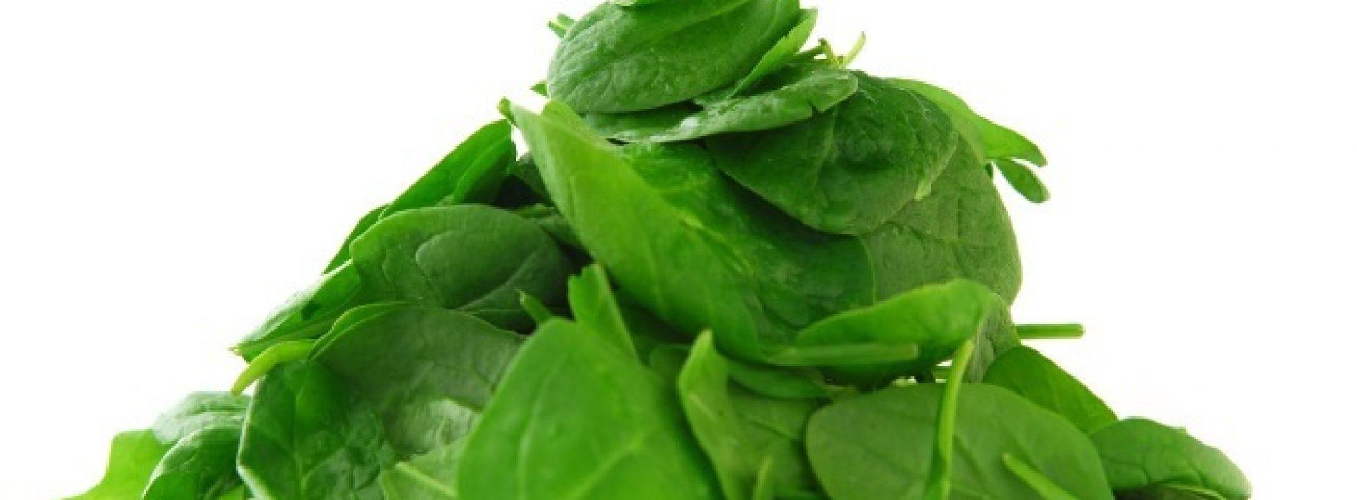 Rauwe spinazie gekoppeld aan 5 belangrijke gezondheidsvoordelen