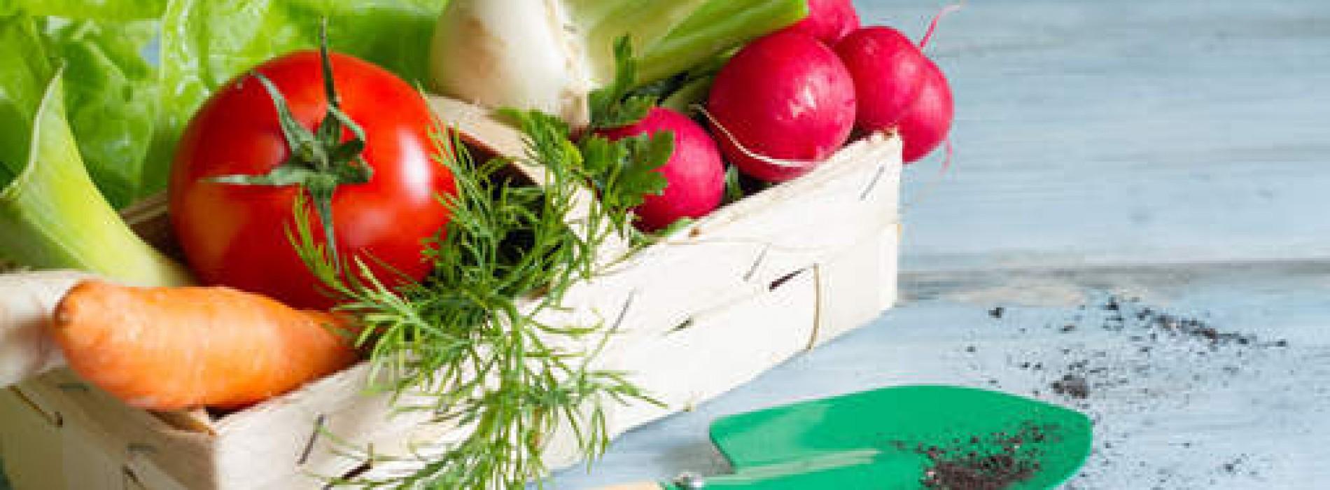 Lente op je bord! Deze groenten smaken nu het beste