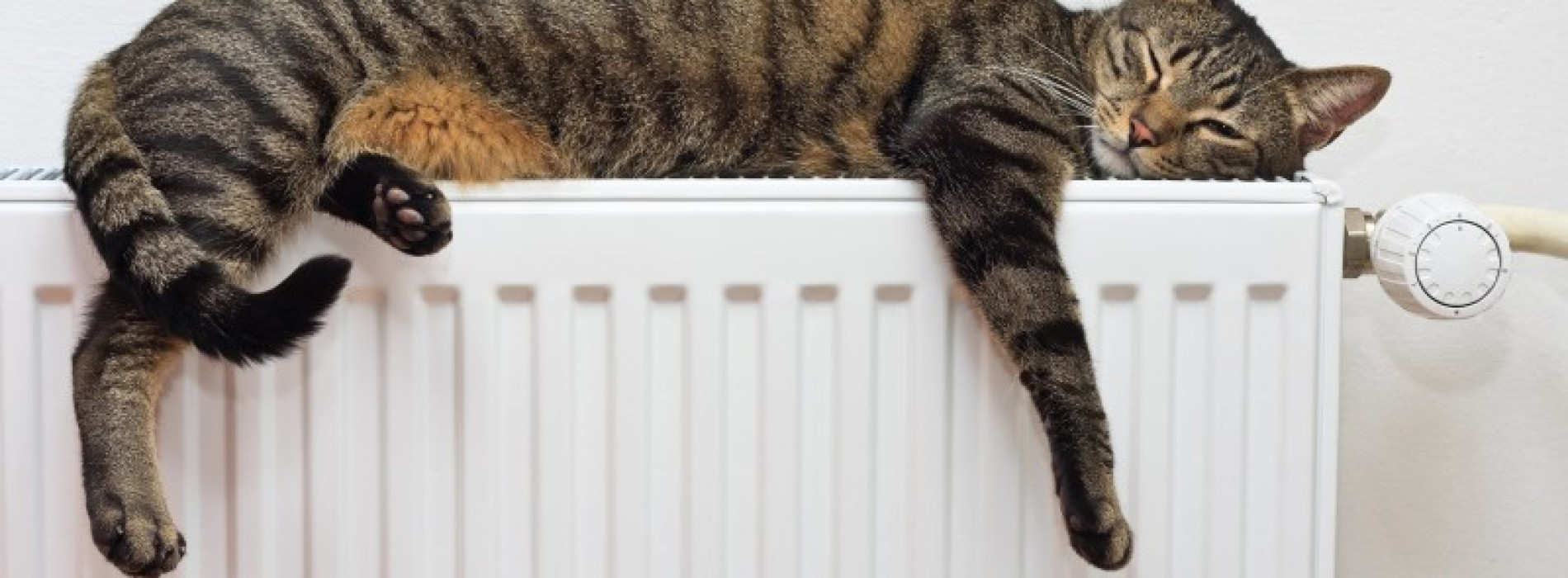 9 tips bij een dip – Zorg voor meer energie