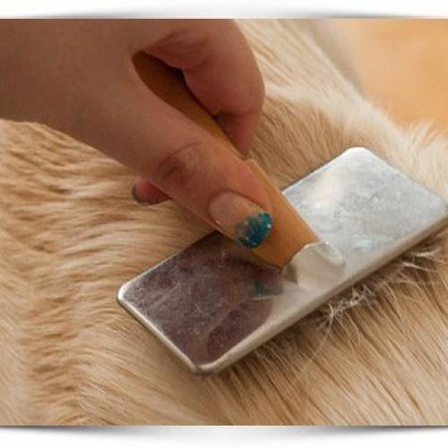 Heb je een kat of een hond? Dan ken je het probleem dat er overal haren liggen. Dit is de beste manier om van die haren af te komen!