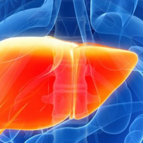 10 krachtige kruiden voor een gezonde lever