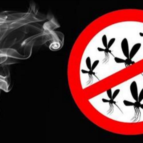 Verbrand DIT buiten je huis en je hebt nooit meer last van muggen!