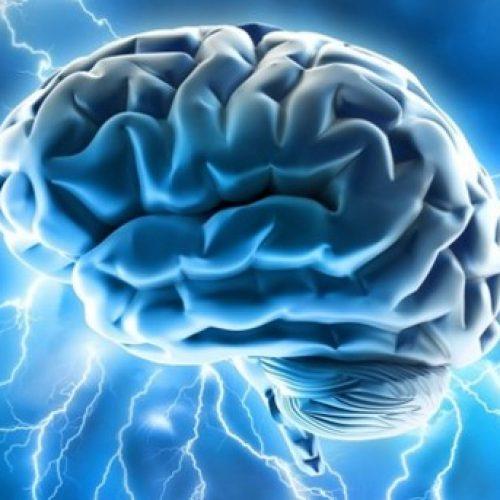 WIETJUICE, vol met antioxidantische, ontstekingsremmende en neuroprotectieve eigenschappen!