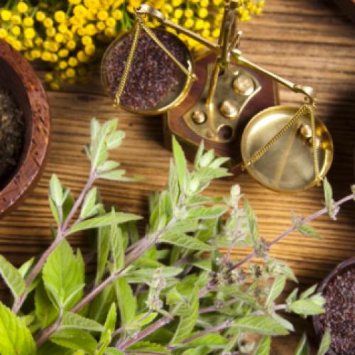 9 Planten die pijn en pijn verminderen om thuis te groeien