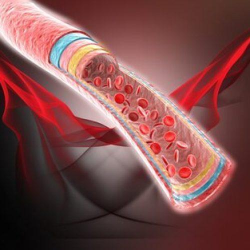 Vier natuurlijke remedies voor bloedcirculatie