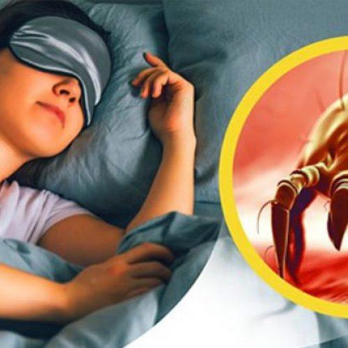 Uw kussensloop heeft meer bacteriën dan uw toiletbril als u uw slopen niet vaak(genoeg) wast