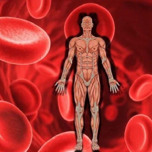 Natuurlijke huismiddeltjes om bloedarmoede te behandelen