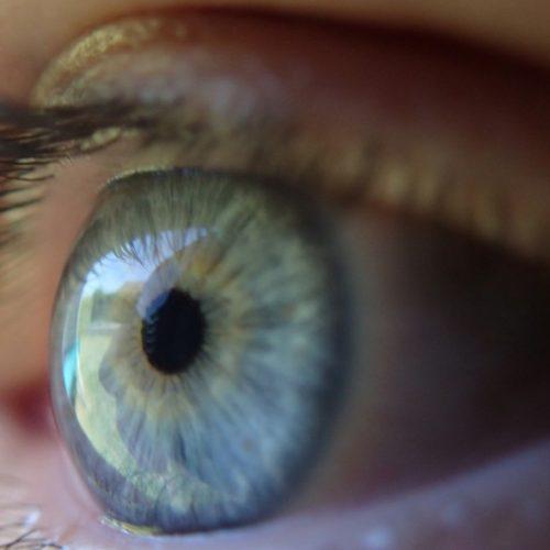 8 voedingsmiddelen om te eten voor gezondere ogen