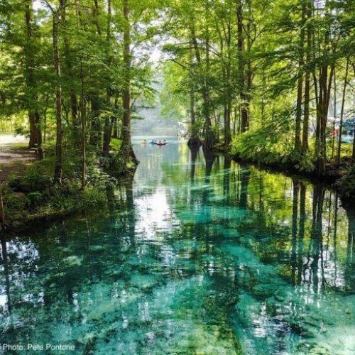 Nestlé is van plan om 1,1 miljoen liter per dag uit de natuurlijke bronnen van Florida te pompen om te verkopen als flessenwater