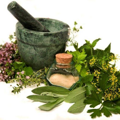 5 Natuurlijke antiseptische planten die je kunt gebruiken om wonden te behandelen